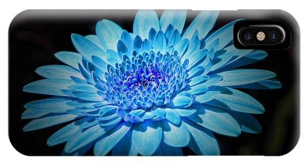 Gerbera Daisy Art IPhone Case
