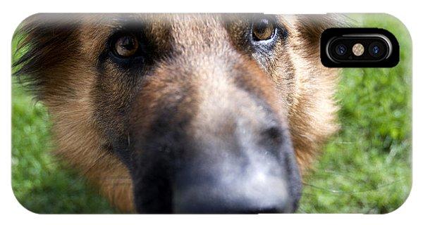 German Shepherd Dog IPhone Case