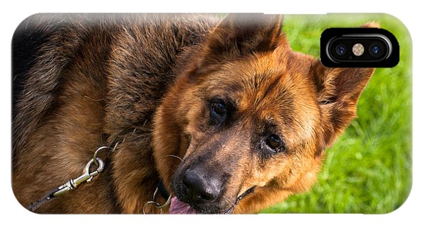German Shepherd Heidi Profile IPhone Case