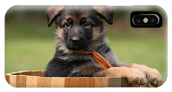 German Shepherd Puppy In Planter IPhone Case