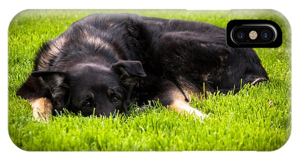German Shepherd Sleeping IPhone Case
