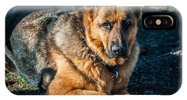 German Shepherd Sonoma Coast IPhone Case
