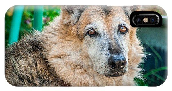 German Shepherd Woody Profile IPhone Case