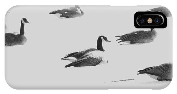 Ghost Geese Over Beverly Hills IPhone Case