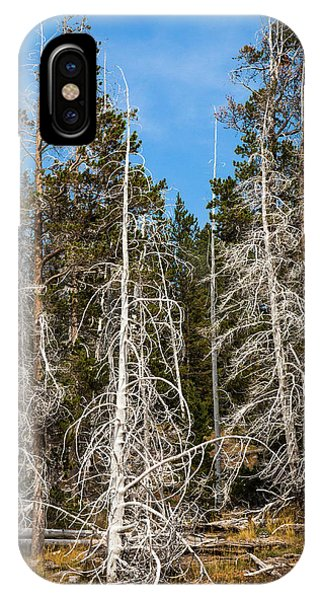 IPhone Case featuring the photograph Ghost Pines At Yellowstone National Park by Lon Dittrick