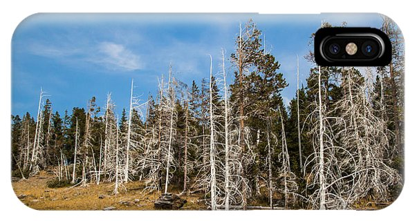 IPhone Case featuring the photograph Ghost Trees At Yellowstone by Lon Dittrick
