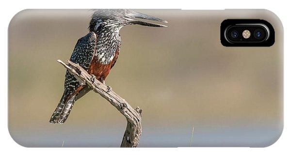 Giant Kingfisher IPhone Case