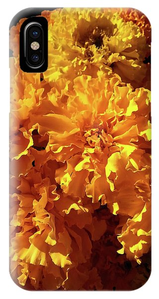 Giant Marigolds IPhone Case