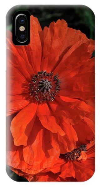 Giant Mountain Poppy IPhone Case
