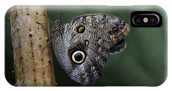 Giant Owl Butterfly On Screw Pine IPhone Case