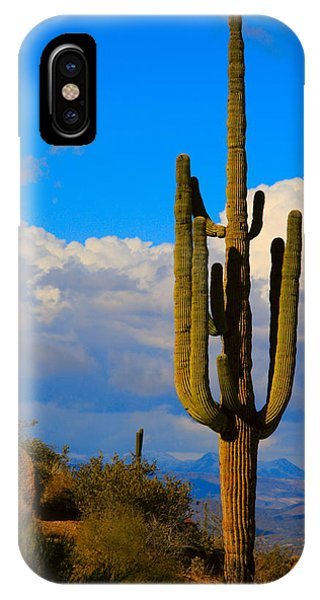 Giant Saguaro In The Southwest Desert  IPhone Case