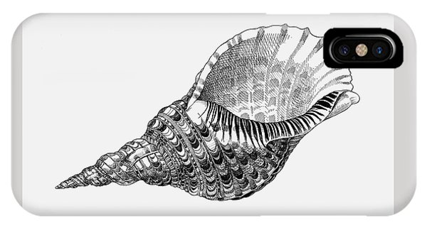 IPhone Case featuring the drawing Giant Triton Shell by Judith Kunzle