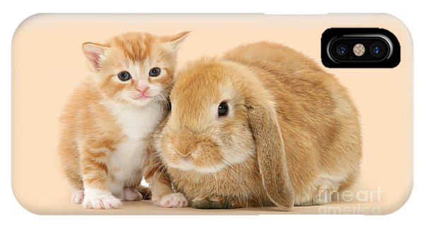 Ginger Kitten And Sandy Bunny IPhone Case