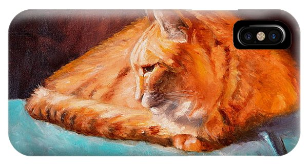 iPhone Case - ginger Kitty Resting by Karen Langley