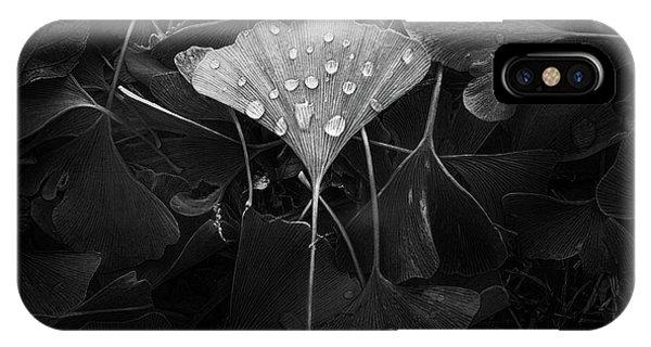 Water iPhone Case - Ginkgo by Scott Norris