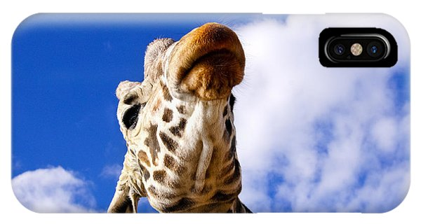IPhone Case featuring the photograph Giraffe by Don and Bonnie Fink