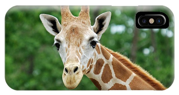 Giraffe Face Phone Case by Teresa Blanton