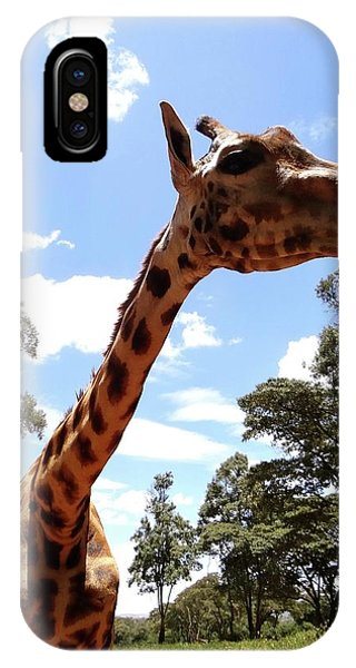 Exploramum iPhone Case - Giraffe Getting Personal 3 by Exploramum Exploramum