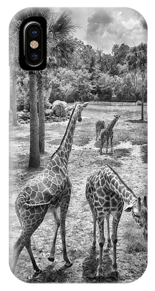 IPhone Case featuring the photograph Giraffe Reticulated by Howard Salmon