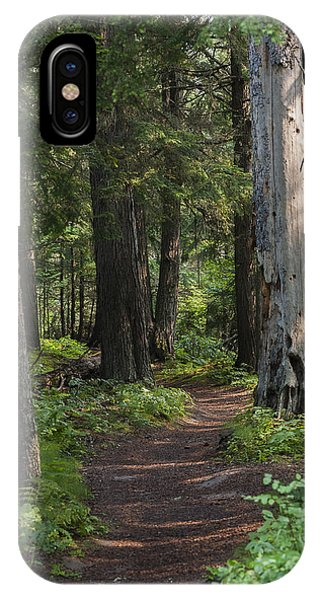 Glacier National Park Woodland Trail IPhone Case