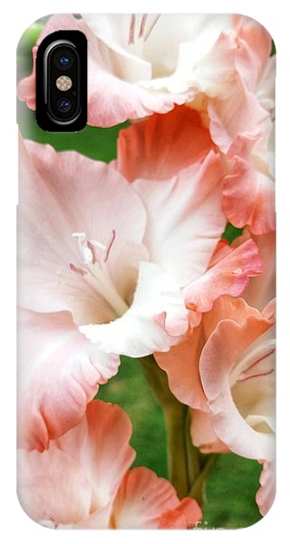 Gladiolus Ruffles  IPhone Case