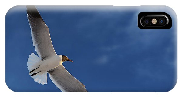 In Flight iPhone Case - Glider by Don Spenner