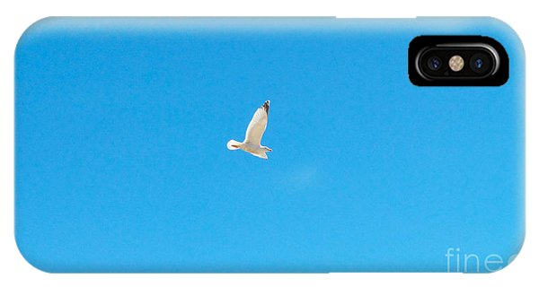Gliding Seagull IPhone Case