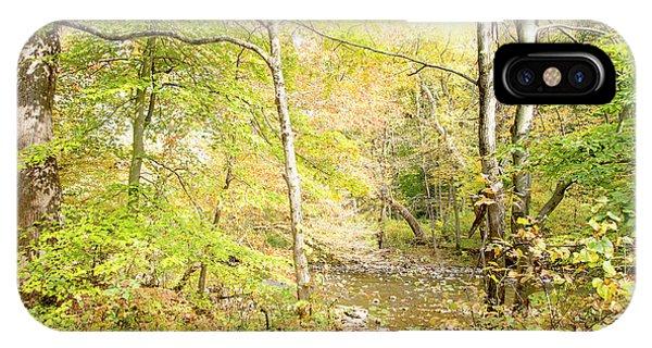 Glimpse Of A Stream In Autumn IPhone Case