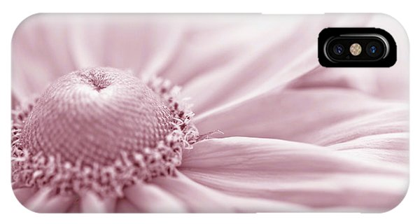 Gloriosa Daisy In Pink  IPhone Case