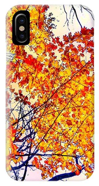 Glorious Foliage IPhone Case