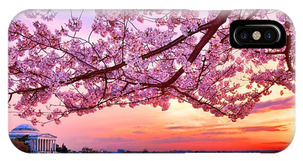 Glorious Sunset Over Cherry Tree At The Jefferson Memorial  IPhone Case