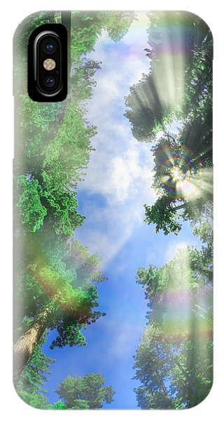 Glory Amongst Redwoods IPhone Case