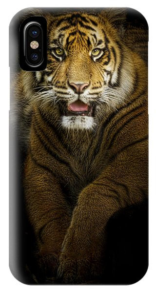 Glory IPhone Case