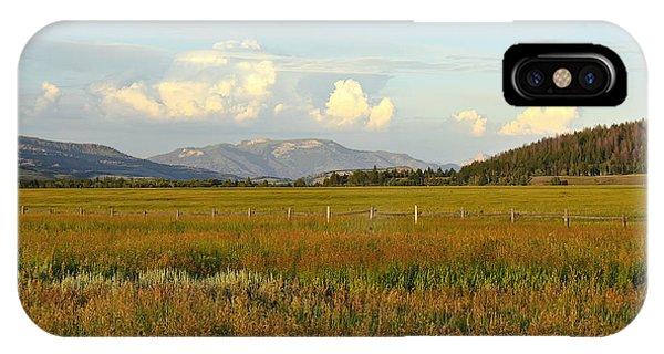 Glowing Meadow IPhone Case