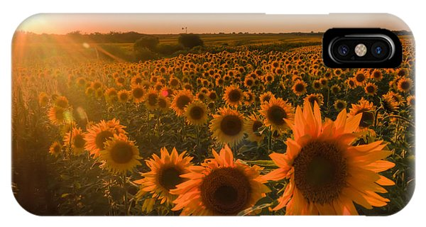 Glowing Sunflowers IPhone Case