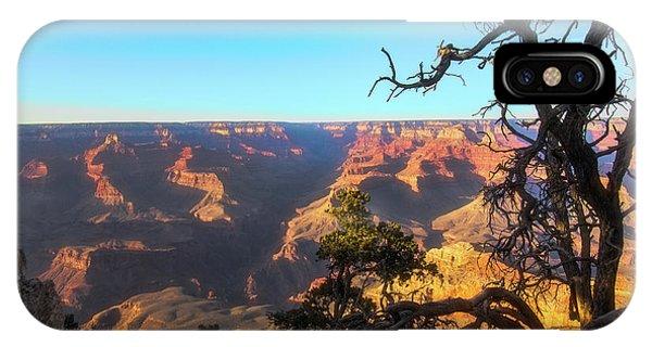 Gnarled Juniper On Canyon Rim IPhone Case