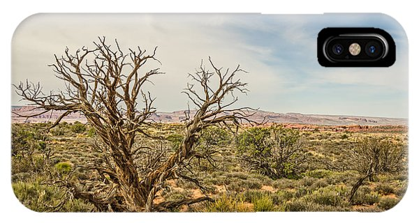 Gnarled Juniper Tree In Arches IPhone Case