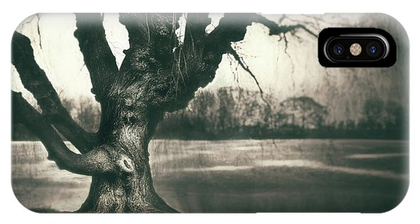 Monochrome iPhone Case - Gnarled Old Tree by Scott Norris