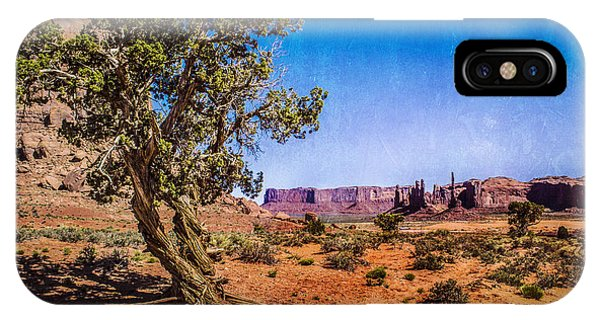 Gnarled Utah Juniper At Monument Vally IPhone Case