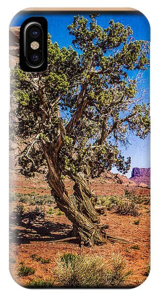 Gnarled Utah Juniper At Monument Vally IPhone Case