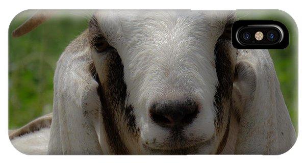 Goat 1 IPhone Case