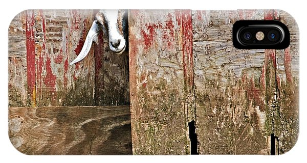 Goat And Old Barn Door IPhone Case