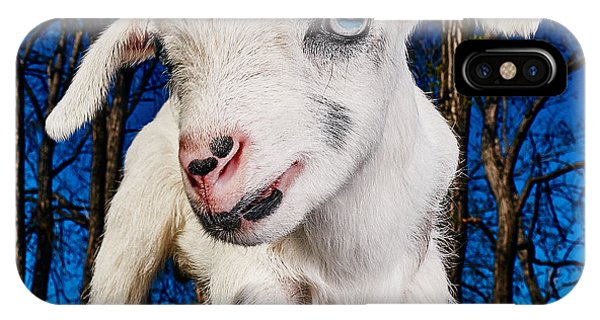 Goat High Fashion Runway IPhone Case