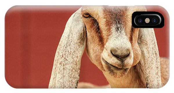 Goat With An Attitude IPhone Case