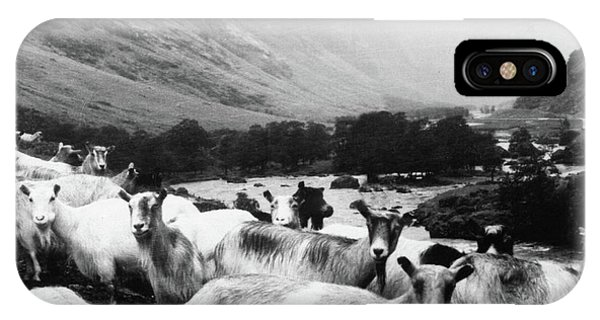 Texture iPhone Case - Goats In Norway- By Linda Woods by Linda Woods