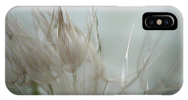 Goatsbeard Seedhead IPhone Case