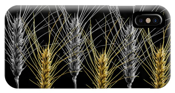 Gold And Silver Wheat IPhone Case
