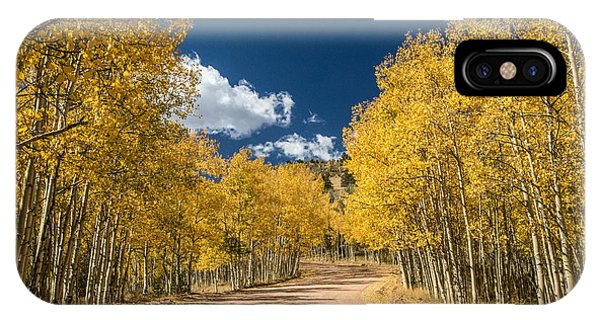 Gold Camp Road IPhone Case