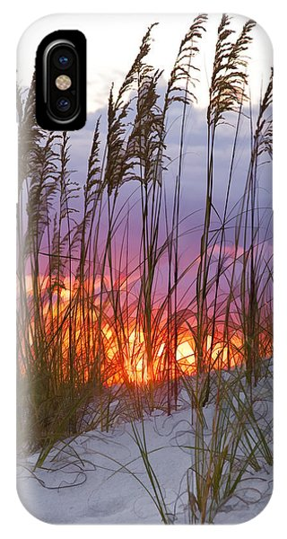 Amber iPhone Case - Golden Amber by Janet Fikar
