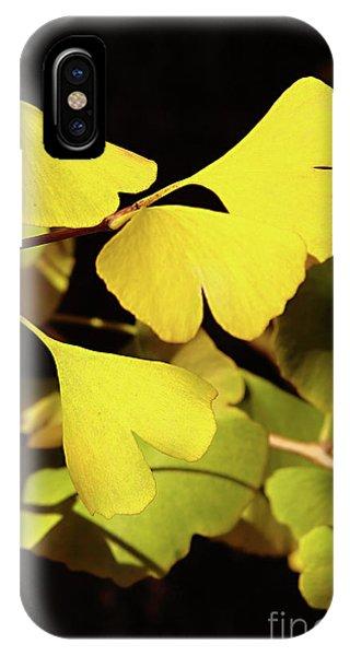 Golden Gardens iPhone Case - Golden Autumn In Tokyo by Delphimages Photo Creations